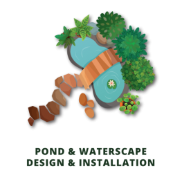 pond and waterscape landscaping